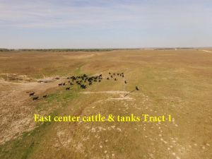 4; E Center Cattle & Tanks Tract 1.pdf